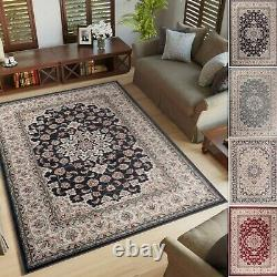 Tapiso Classical Anthratice / Blue / Beige / Red Rugs Vintage Floral Pattern